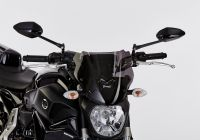 Naked bike screen YAMAHA MT-07 RM17/RM18, MT-07 RM04